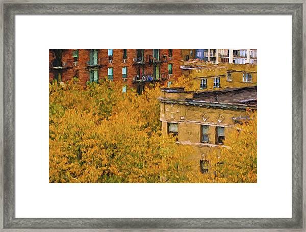 Autumn In Chicago Framed Print