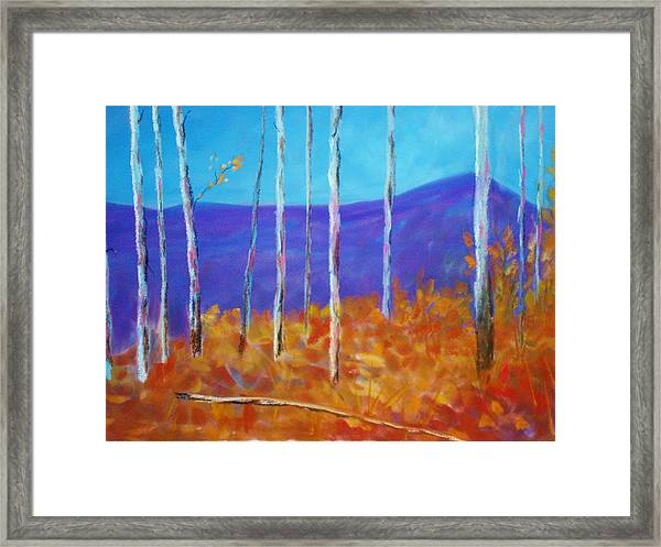 Autumn In Cloudcroft Framed Print