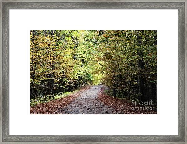 Autumn In Michigan Framed Print