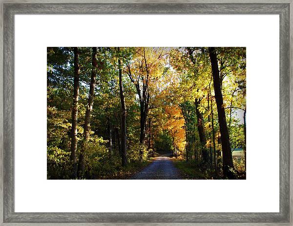 Autumn In Missouri Framed Print
