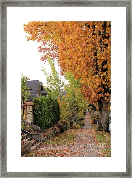 Autumn In The City Framed Print