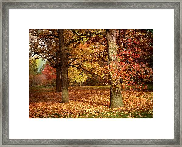 Autumn In The Orchard Framed Print
