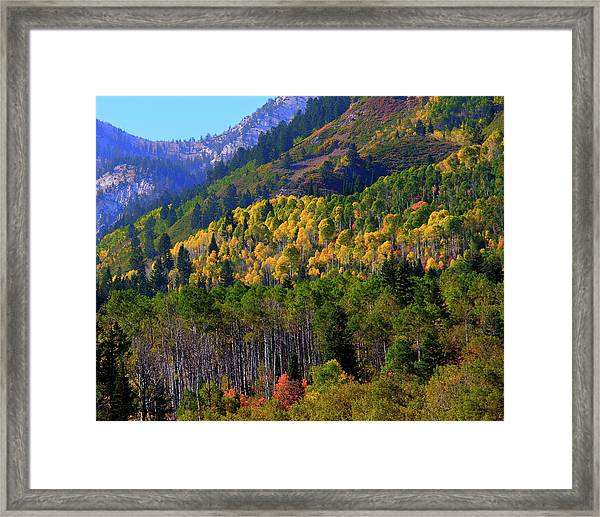 Autumn In Utah Framed Print