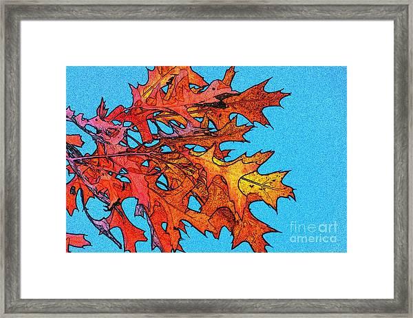 Autumn Leaves 14 Framed Print