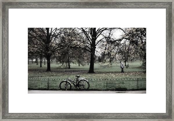 Autumn Life Framed Print