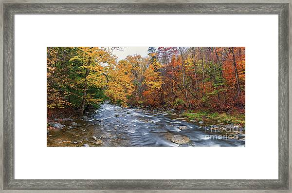 Autumn Magic Framed Print
