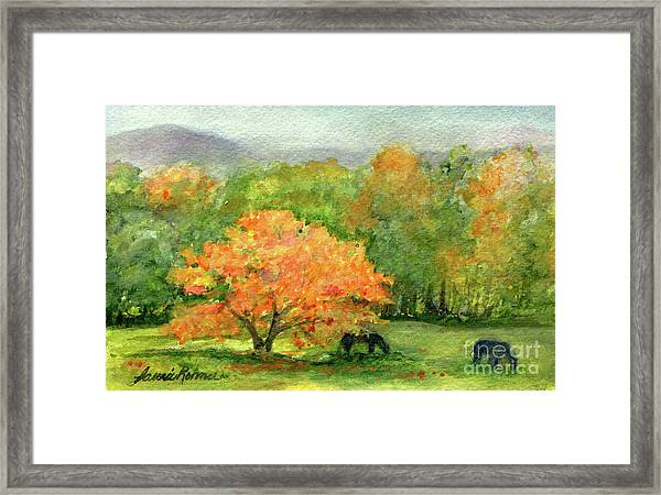 Autumn Maple With Horses Grazing Framed Print