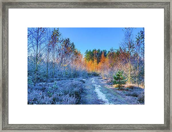 Autumn Meets Winter Framed Print