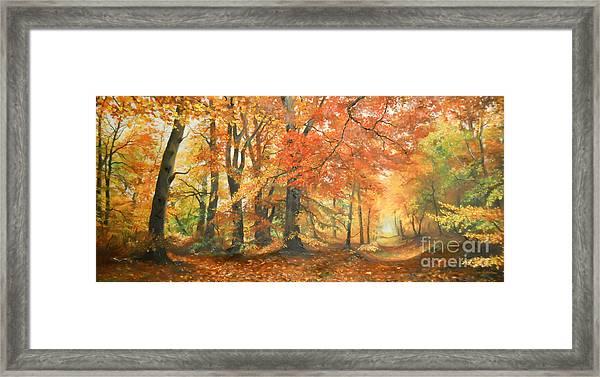 Autumn Mirage Framed Print