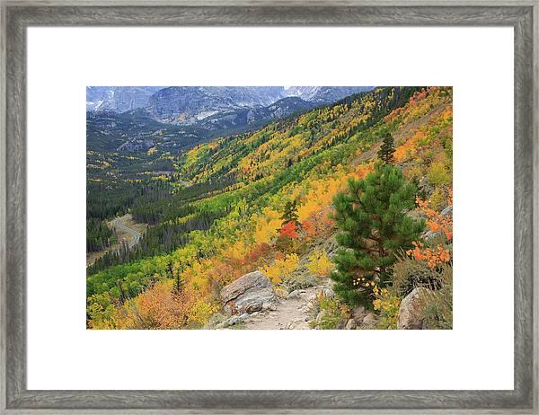 Autumn On Bierstadt Trail Framed Print