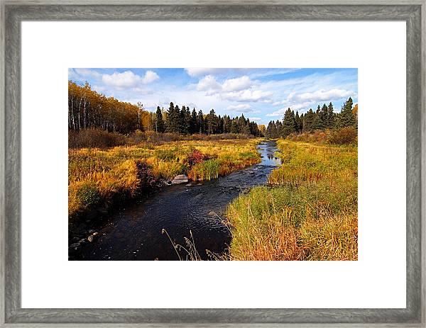 Autumn On Jackfish Creek Framed Print