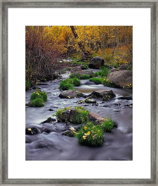 Autumn On Mill Creek Framed Print