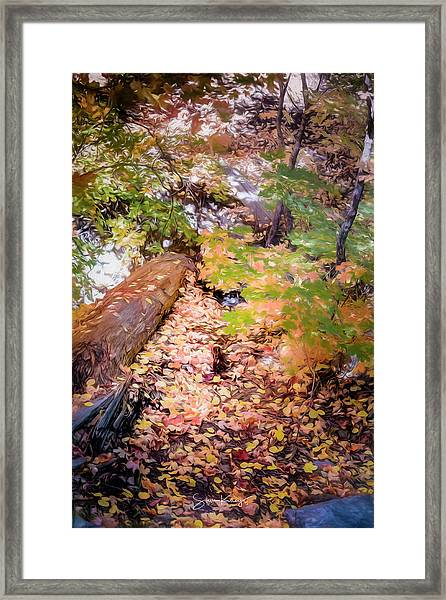 Autumn On The Mountain Framed Print