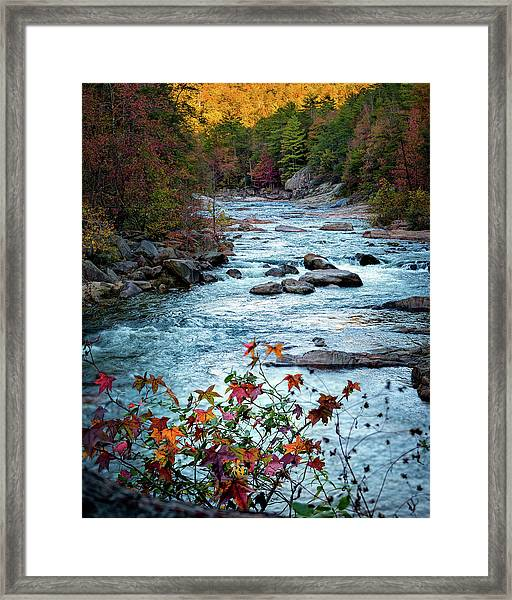 Autumn On Wilson Creek Framed Print