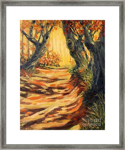 Autumn Pathways Framed Print