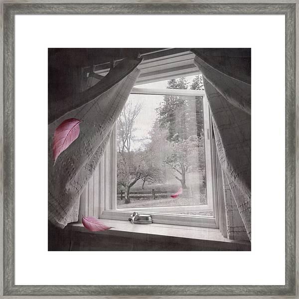 Autumn Pays A Visit Framed Print