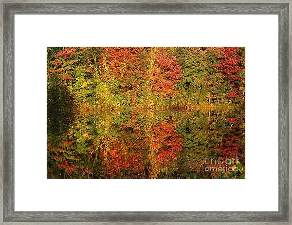 Autumn Reflections In A Pond Framed Print
