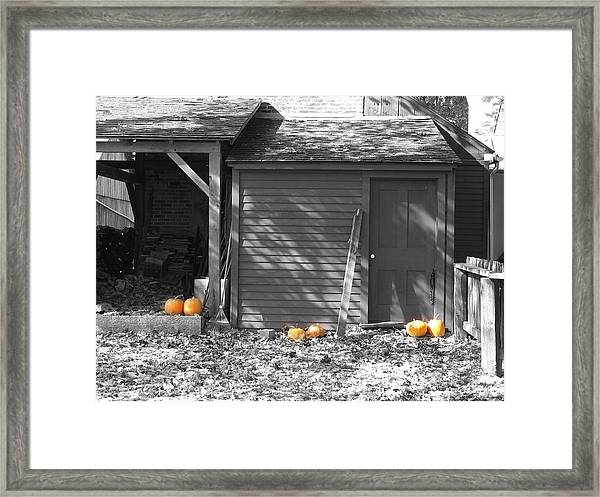 Autumn Rest Framed Print