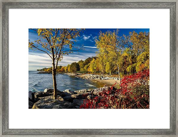 Autumn Scene Lake Ontario Canada Framed Print