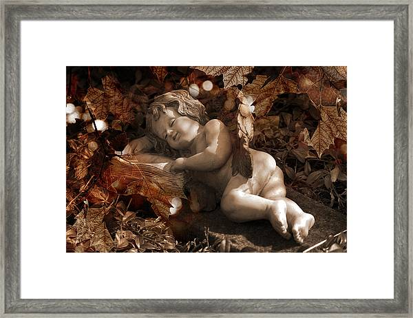 Autumn Sleep Framed Print