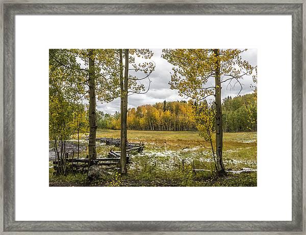 Autumn Snow Fall Framed Print
