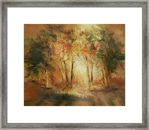 Autumn Sun Framed Print by Aneta  Berghane