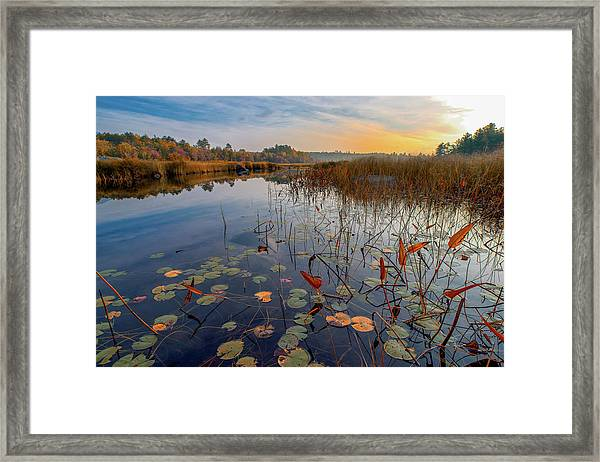 Autumn Sunrise At Compass Pond Framed Print