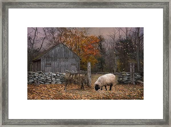 Autumn Sweater Framed Print