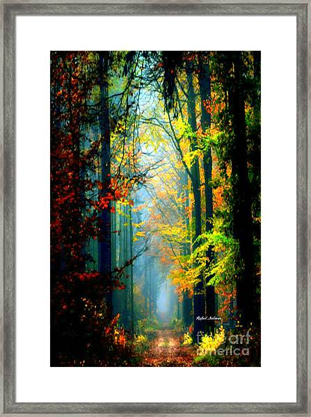 Autumn Trails In Georgia Framed Print