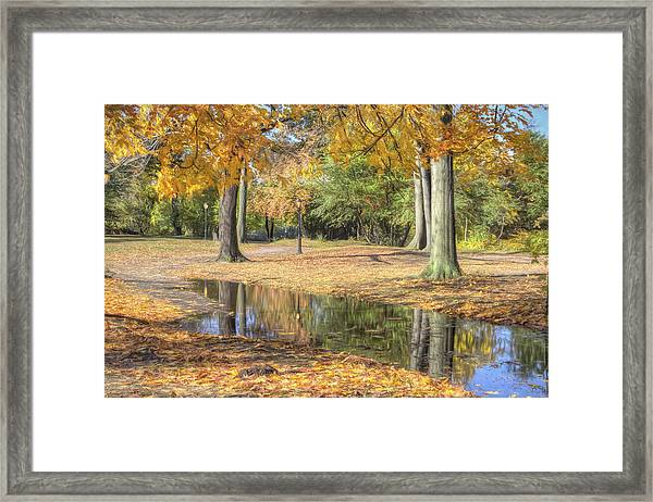 Autumn Tranquility Framed Print by Zev Steinhardt