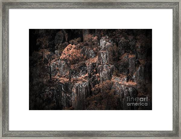 Autumn Trees Growing On Mountain Rocks Framed Print