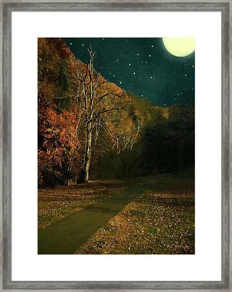 Autumn Tunnel Framed Print