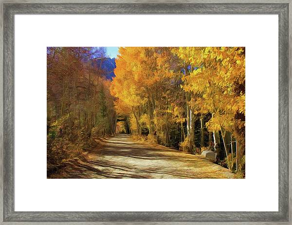 Autumn Walk At June Lake Framed Print