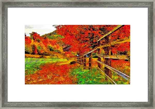 Autumnal Blaze Of Glory Framed Print