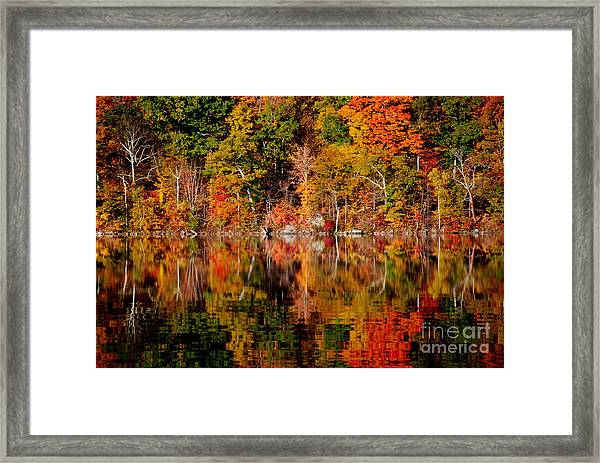 Autumnal Reflections Framed Print by Andrea Simon
