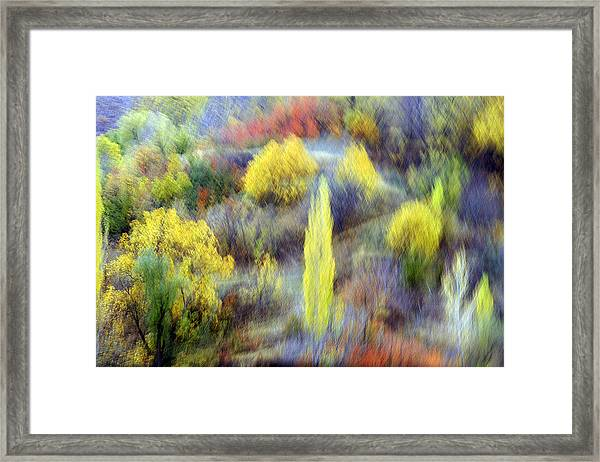 Autumnal Framed Print by Robert Shahbazi