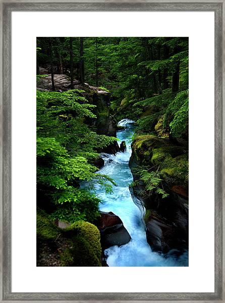 Avalanche Creek Waterfalls Framed Print