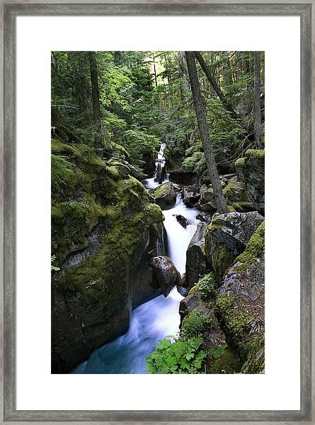 Avalanche Gorge Glacier National Park Framed Print