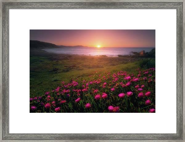 Azkorri In Springtime Framed Print