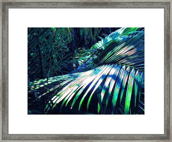 Azul Shimmer Framed Print by Scott K Wimer