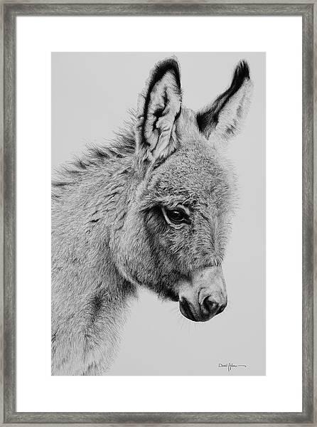 Baby Donk Framed Print