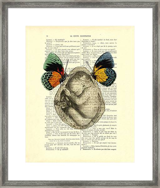 Baby Foetus And Butterflies Framed Print