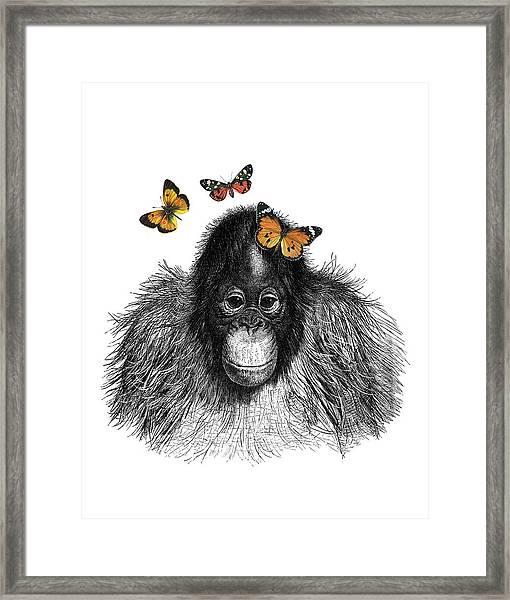Baby Monkey With Orange Butterflies Framed Print