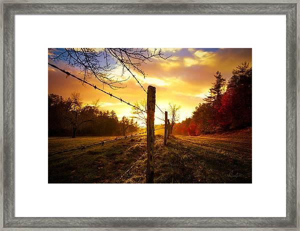 Back Light Framed Print