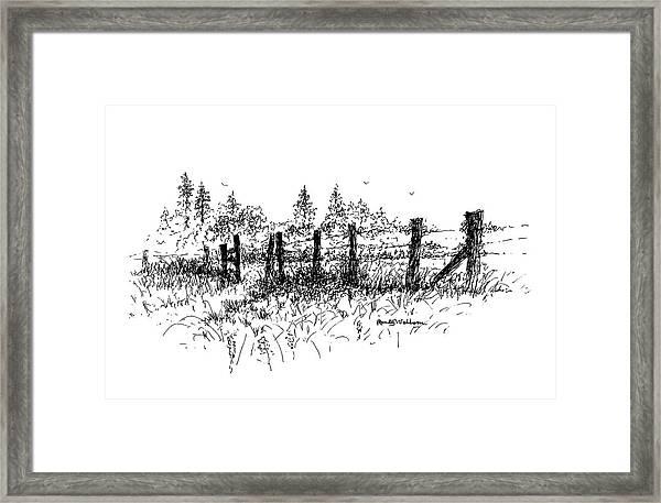 Backlit Fence Framed Print