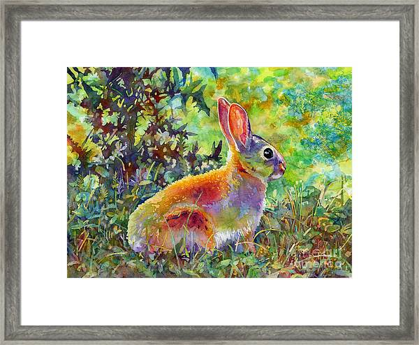 Backyard Bunny Framed Print