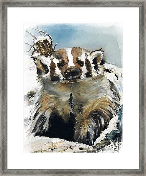 Badger - Guardian Of The South Framed Print