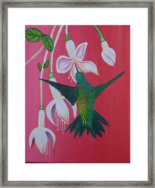 Badhum Framed Print