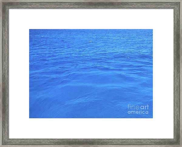 Framed Print featuring the photograph Bahama Blue by Barbara Von Pagel