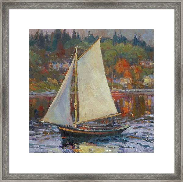 Bainbridge Island Sail Framed Print